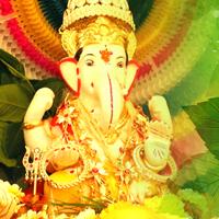 जीवन में प्रगति के लिए गणपति को चढ़ाएं पत्ते! (Worship Lord Ganesha with These Special Leaves)