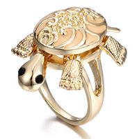 क्या है कछुए की अंगूठी और घर पर रखे कछुए का राज़?
